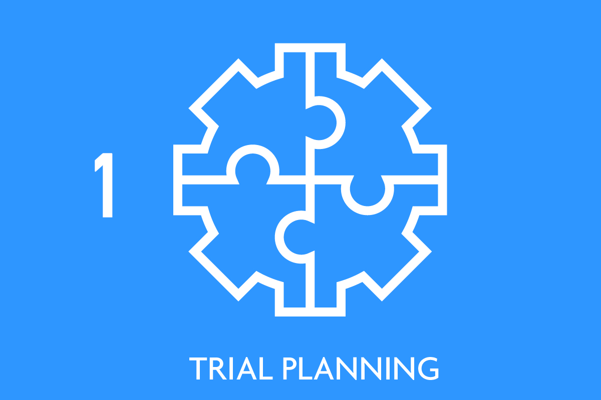 Trial Planning Icon