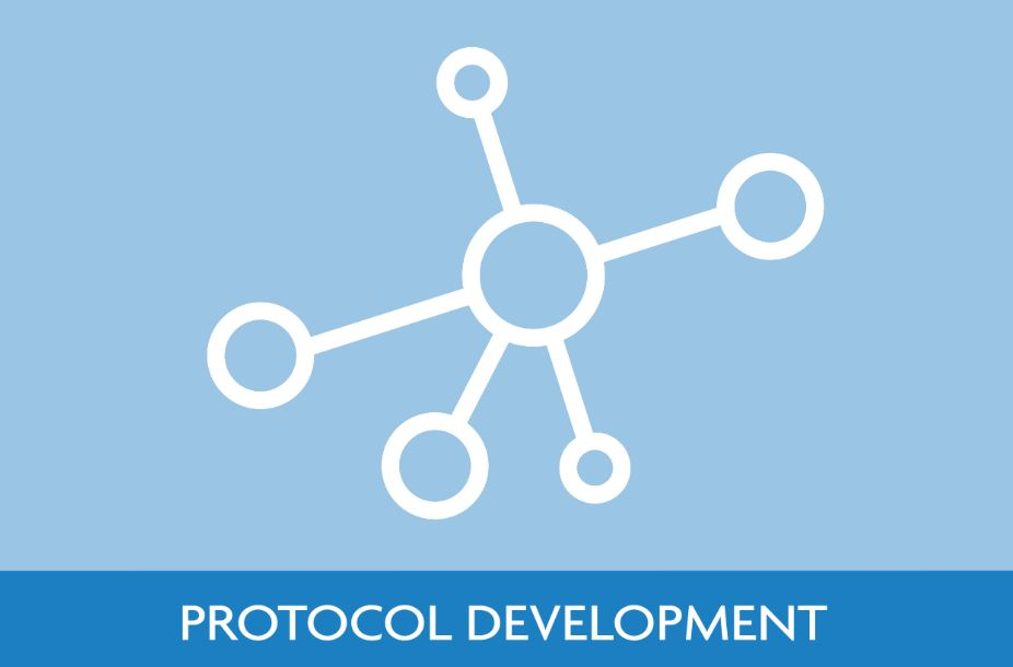 Protocol Development Icon