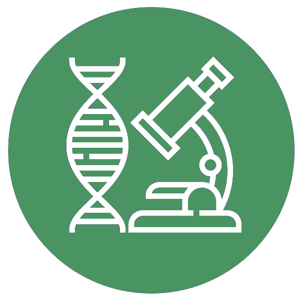 Research Icon Green